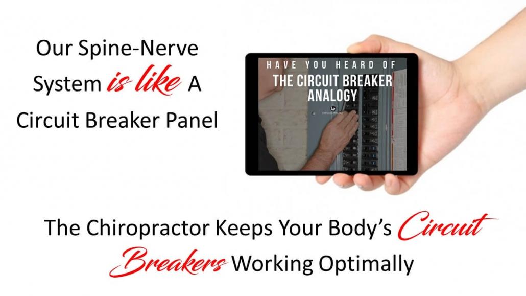 Chiropractor in Centennial describes nerve problems